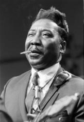 Download Muddy Waters ringetoner gratis.